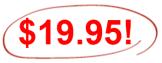 19.951
